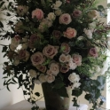 antique-pink-roses-in-terracotta-pot